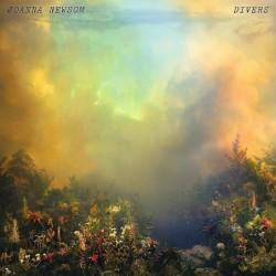 Divers [Vinyl 2LP]