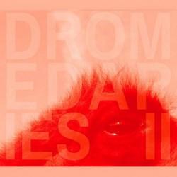 Dromedaries II