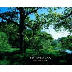 MetaMuzyka