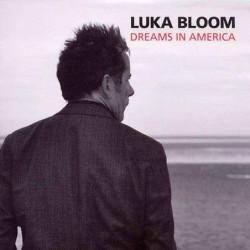 Dreams in America [Vinyl...