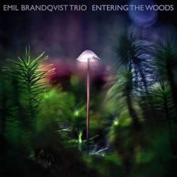 Entering The Woods [Vinyl...