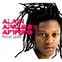 Flood Gate