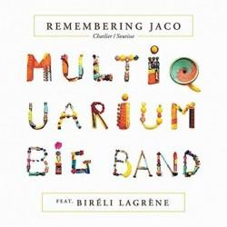Remembering Jaco [Vinyl 2LP]