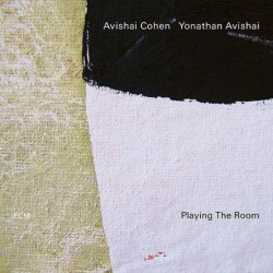 Playing The Room [Vinyl 1LP]