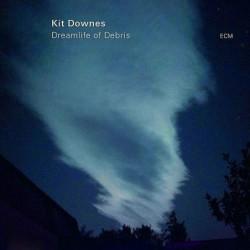 Dreamlife of Debris [Vinyl...